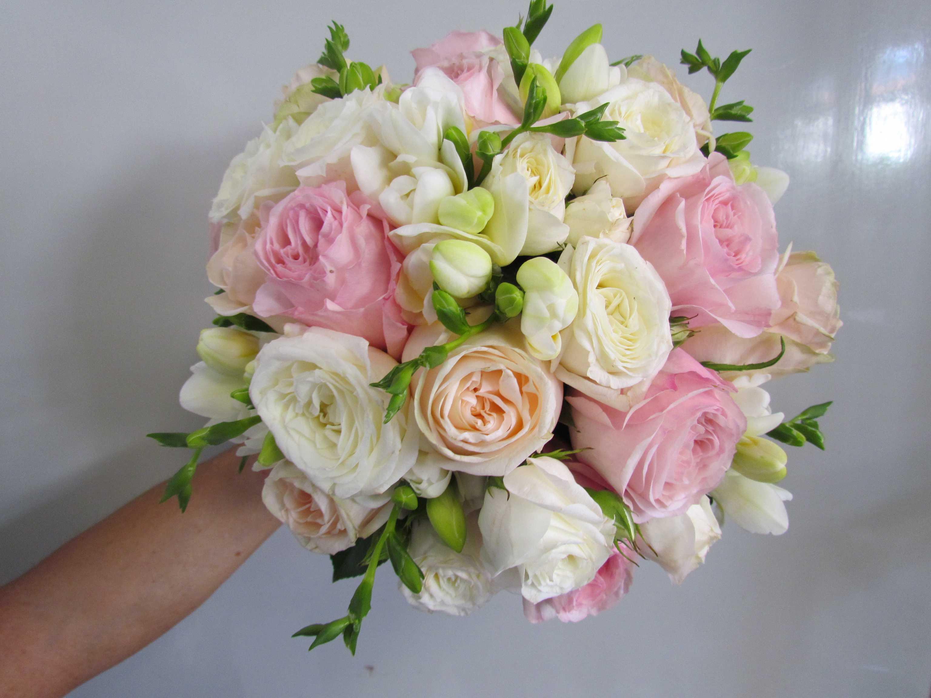 Rose inglesi e fresia pirovano mario fiori for Rose inglesi
